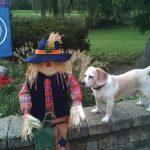 Gramm_5_-_Dunkin_the_Beagle