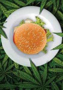 cover-story-cannabis